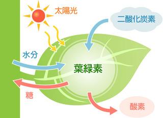 shikumi_img_003.jpg